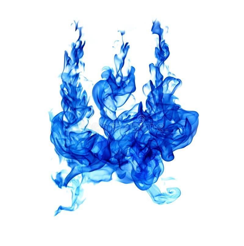 Fiamme blu isolate su fondo bianco immagine stock libera da diritti