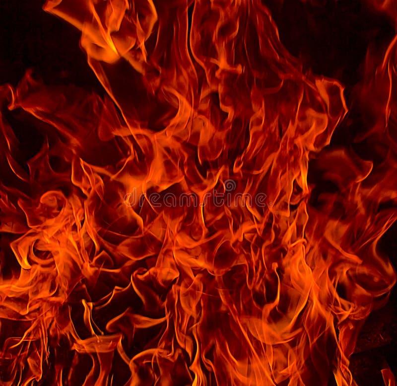 Fiamme Del Fuoco Rosso Dell'inferno Fotografia Stock ...