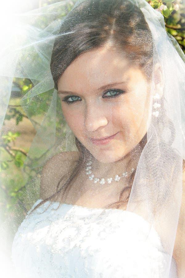 Fiancebröllop arkivfoton