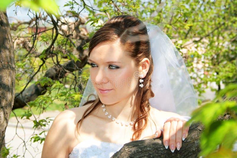 Fiancebröllop arkivbild
