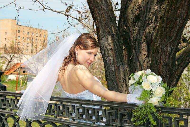 Fiancebröllopby royaltyfria bilder
