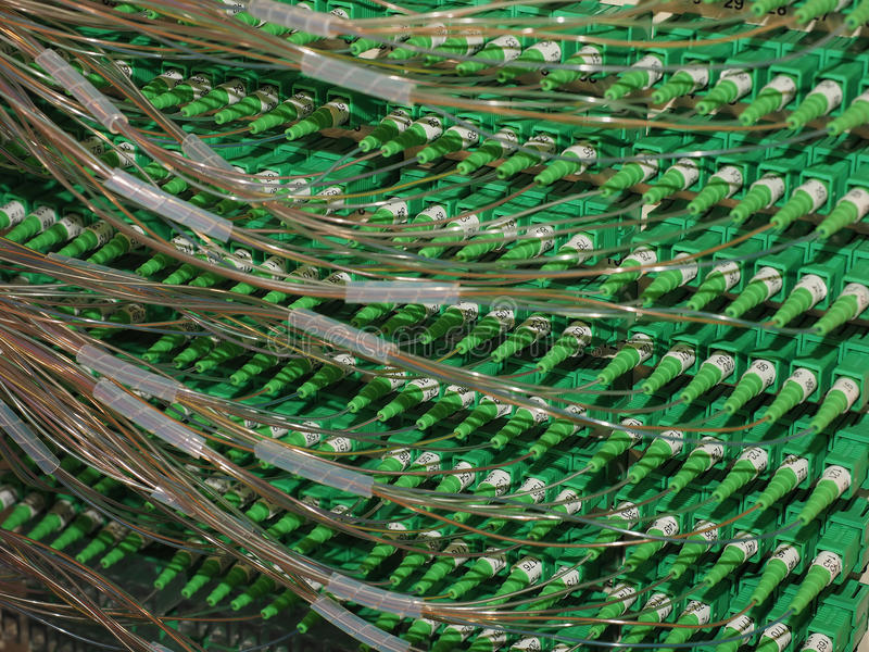 Fiber Optic Connectors in an Distribution Panel connecting homes to Broadband royalty free stock images