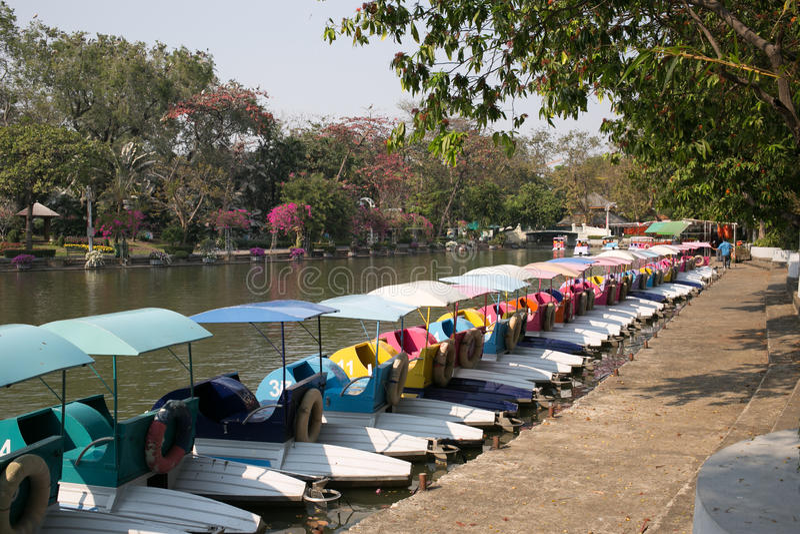 Fiberglas-Tretboot - Dusit-Zoo, Bangkok, THAILAND stockfotos
