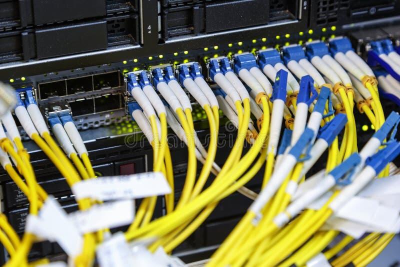 Fibra ottica dei cavi di Internet che si collega sullo swtich della rete del centro in server fotografia stock libera da diritti