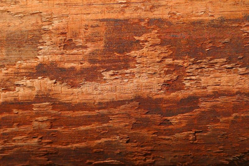 Fibre de bois images stock