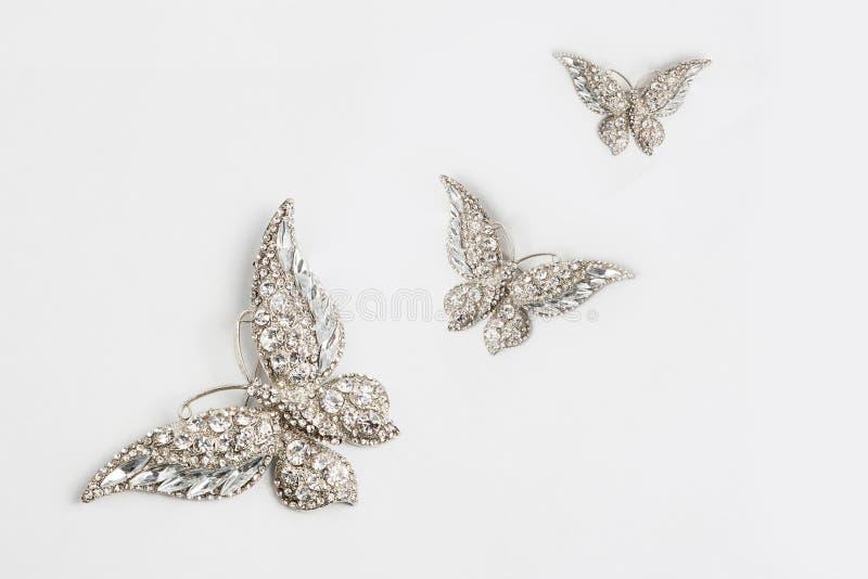 Fibula della farfalla immagine stock