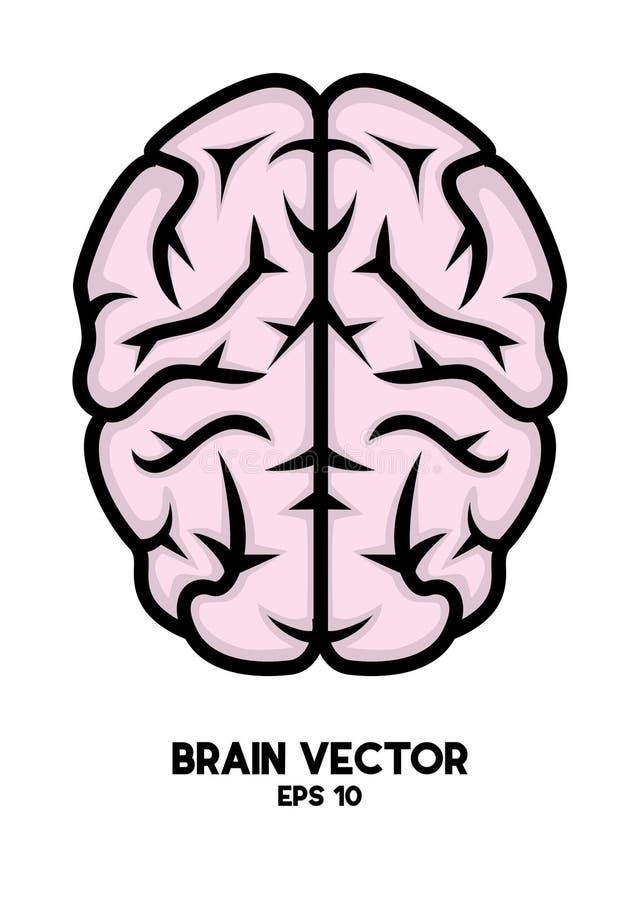 """Fichero del ejemplo de la acción †del ejemplo de la acción """"del vector†del cerebro del """" stock de ilustración"""