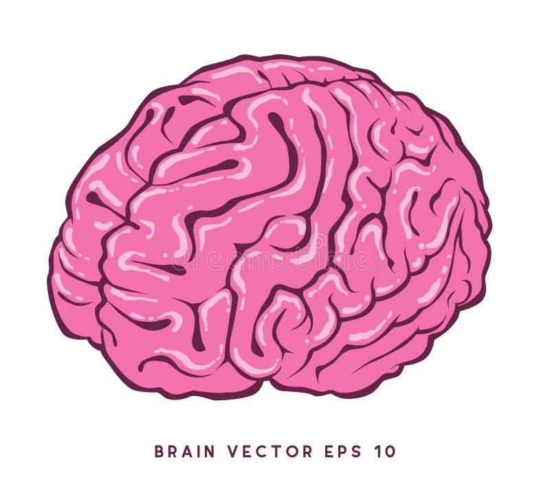 """Fichero del ejemplo de la acción †del ejemplo de la acción """"del vectorfile†del cerebro del """" ilustración del vector"""