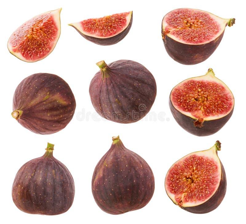 Fichi isolati Intera bacca o frutta matura fresca, mezzo fico ed insieme della fetta del taglio isolata su fondo bianco con il pe immagini stock