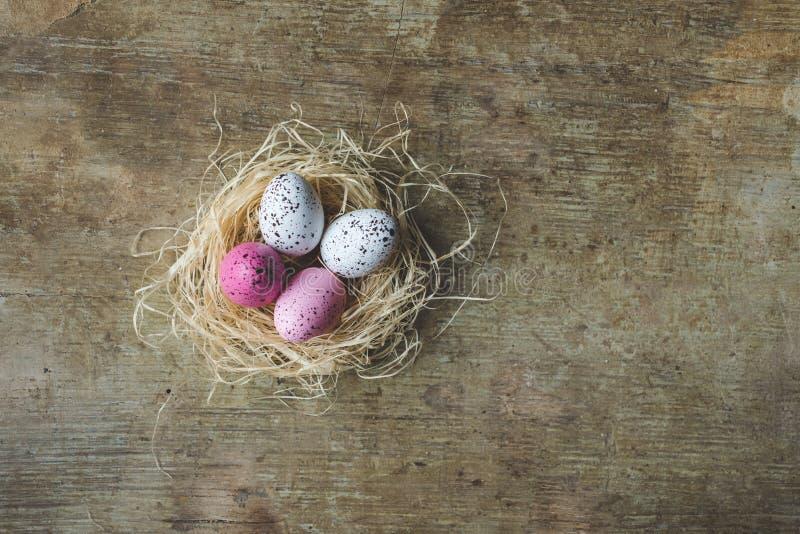 Fick fräknar den övre och bästa sikten för slutet av ett påskrede med vitt och rosa färger påskägg på träbakgrund royaltyfria bilder