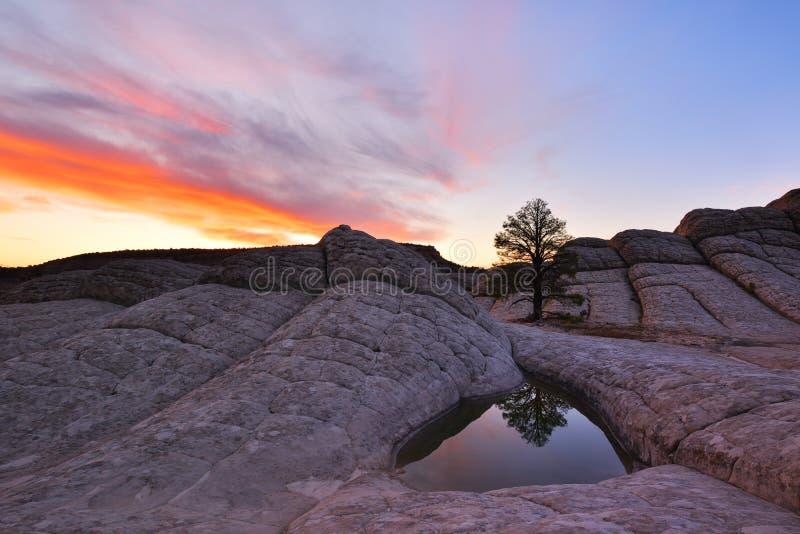 Fick- soluppgång för vit, Paria Kanjon-cinnoberfärger klippor royaltyfri foto