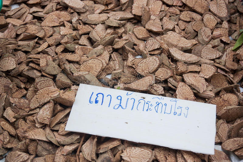 Ficus foveolata Wall, Thailand put on the market. Thailand language text on the label is the name of the herb, Thailand. When translated into English, is `Ficus stock photos