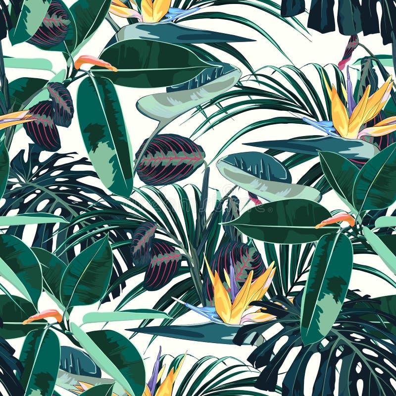 Ficus, Palmblätter und nahtloses Muster der gelben Strelitziablumen, tropisches Laub, Niederlassung, Grün vektor abbildung