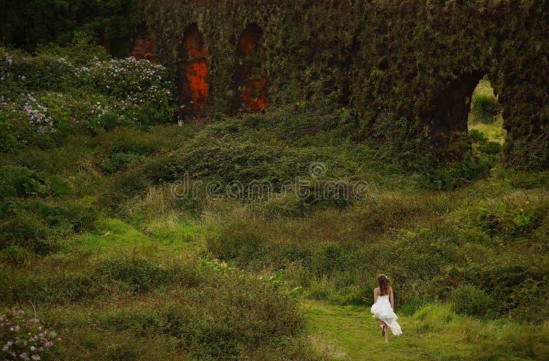 Fidanzata nel paesaggio di verde del Flores, Azzorre, Portogallo fotografie stock