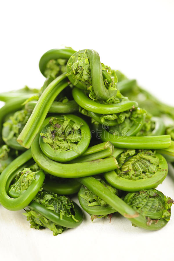 Download Fiddleheads stock image. Image of nutritious, heaped - 14667939