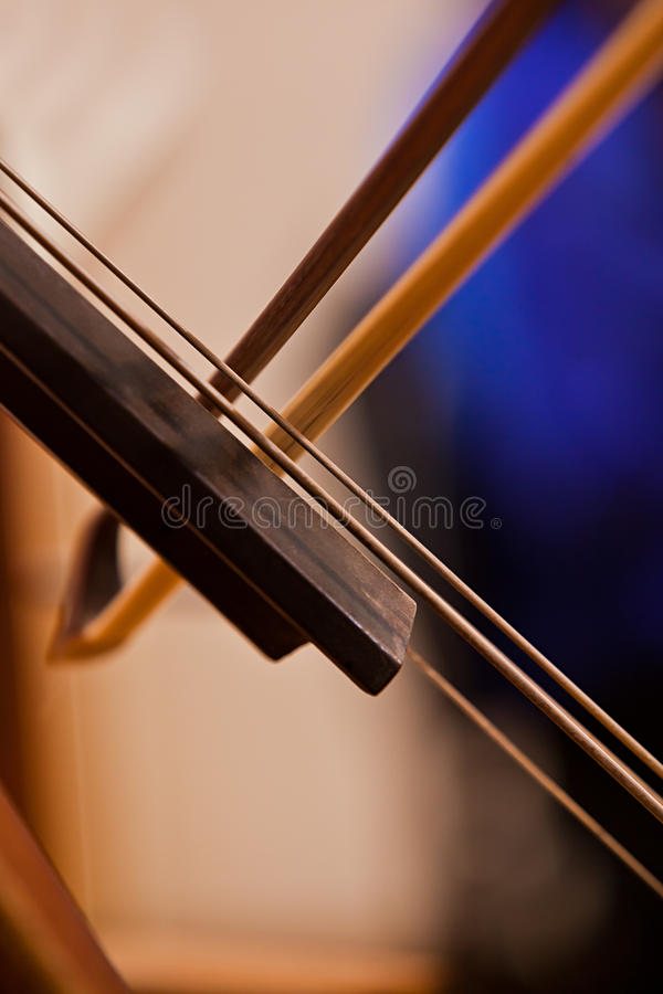 Fiddlestick on the strings bass. Closeup stock photography