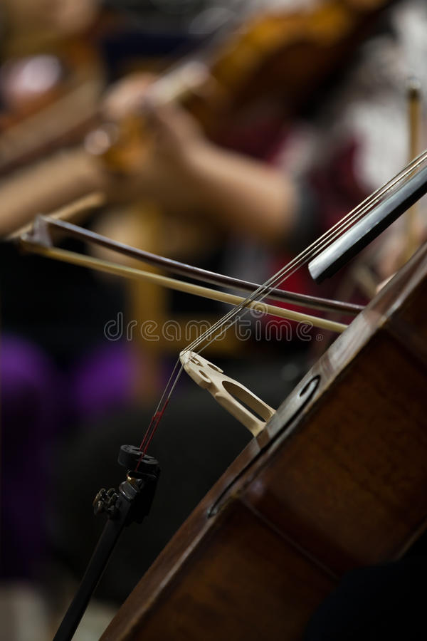 The fiddlestick on the strings cello. Closeup stock image