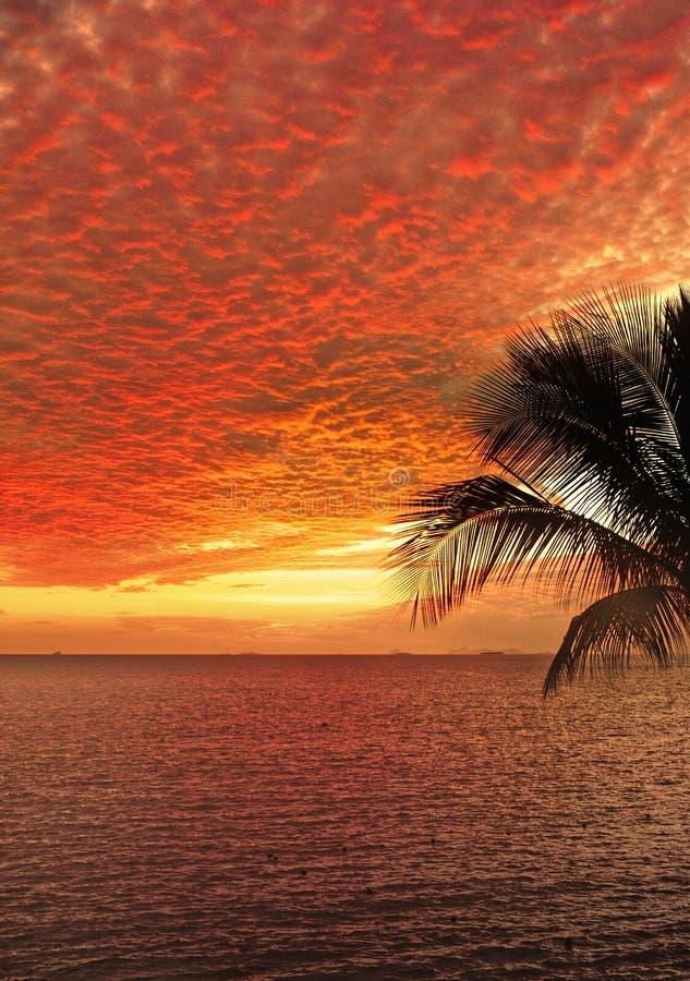 Fidschi-Sonnenuntergang stockbilder