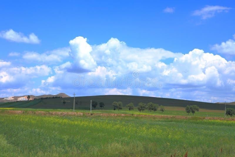 field небо стоковое фото rf