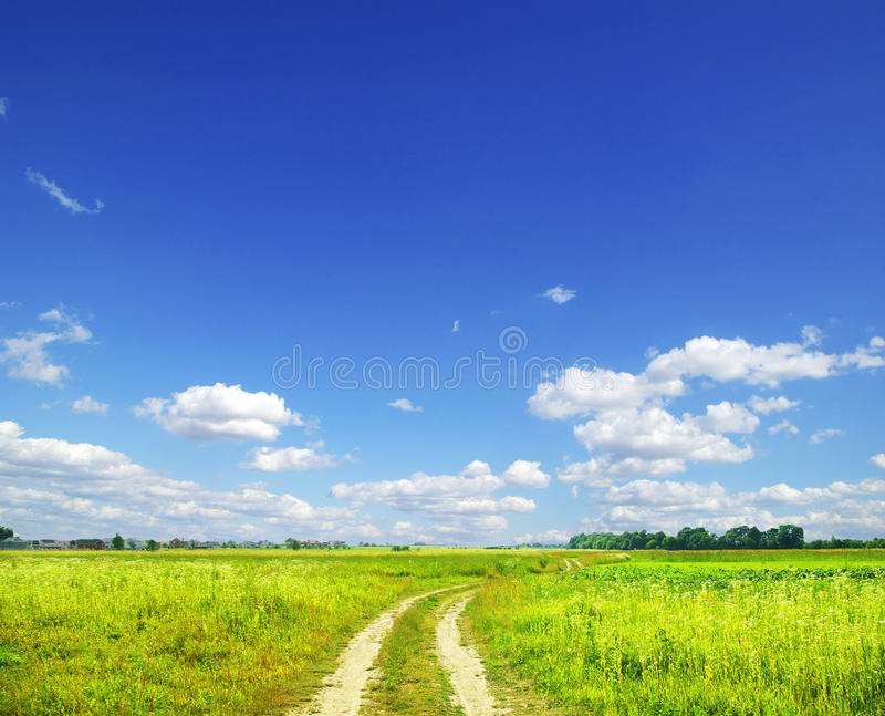 Download Field stock image. Image of vista, lawn, wind, outdoors - 17868005