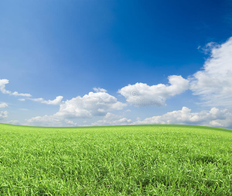 Download Field stock image. Image of rural, pasture, lawn, green - 18233479