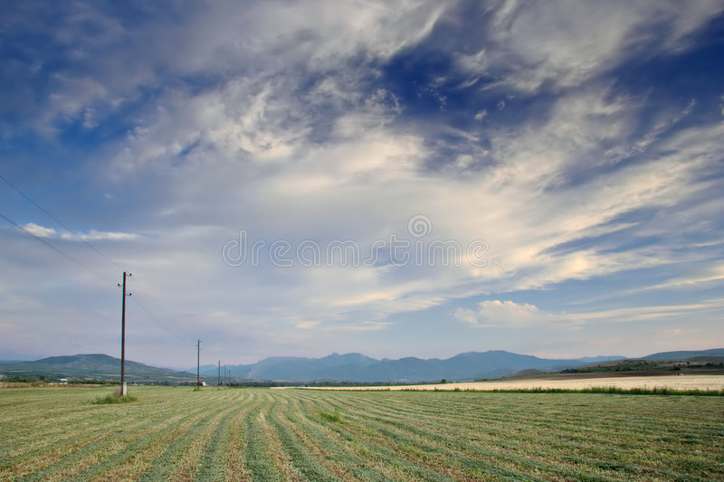A field stock photography