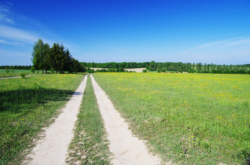 Download Field Royalty Free Stock Photography - Image: 25597417