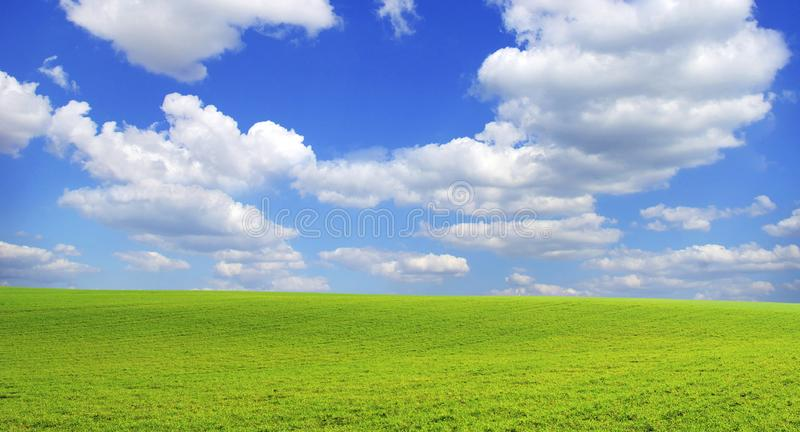 Download Field stock photo. Image of wind, outside, land, grass - 8878218