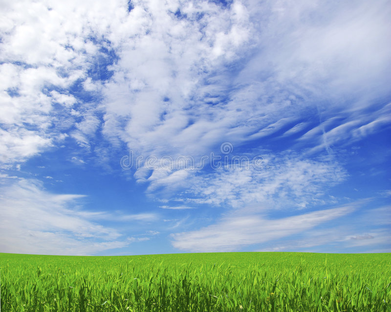 Download Field stock image. Image of outside, lawn, panoramic, rural - 9200613