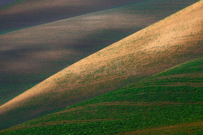 Field abstraction.Colorful plowed field with geometric lines stock images