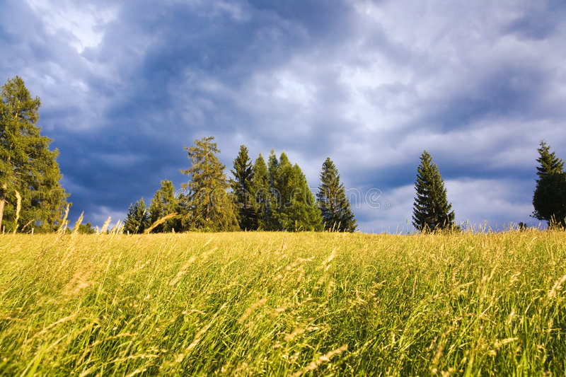 Field against dramatic sky royalty free stock photo