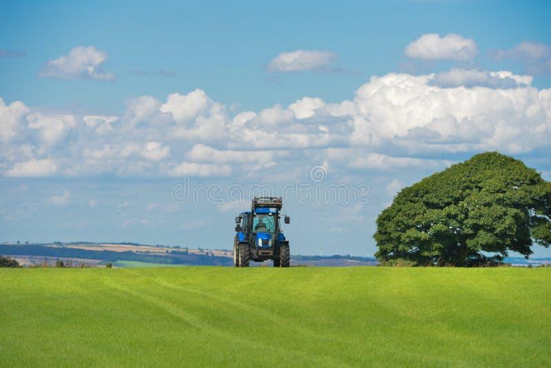 Free Public Domain CC0 Image  Field-agriculture-farm-grass Picture ... 09c7fdfbc25