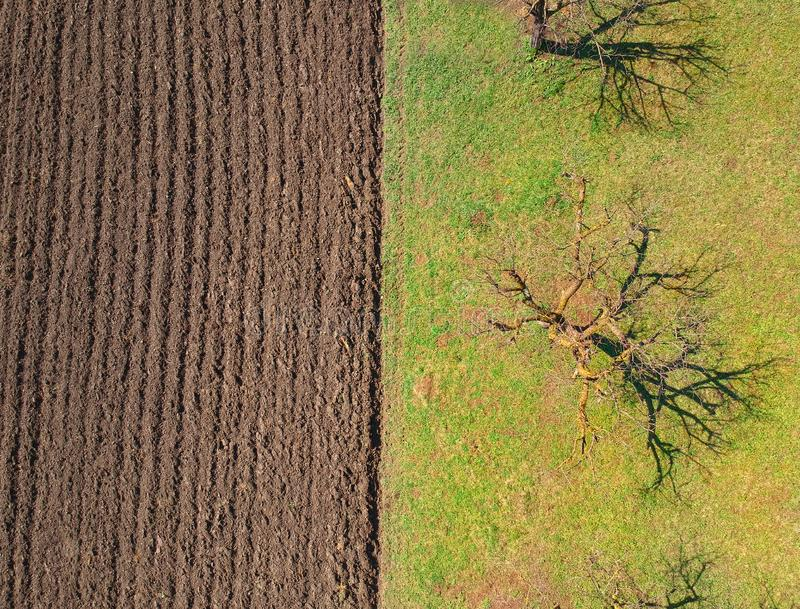 Field for agriculture in the village. Aerial view stock photos