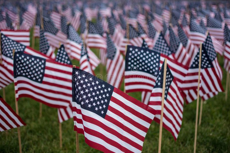 A field of American Flags. Flowing in the wind on Boston Common, the star spangled banner stock photo