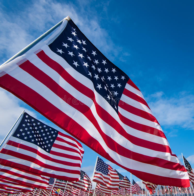 Field of American Flags. A field of hundreds of American flags. Commemorating veteran's day, memorial day or 9/11 royalty free stock photos