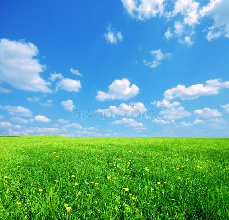 Free Field And Cloudscape Stock Photo - 8187640