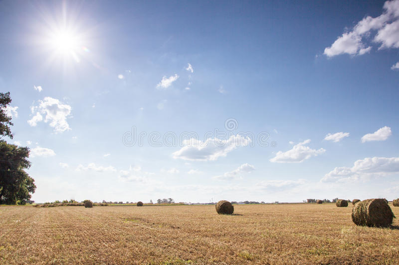 Field with bales of straw. Bales of straw on the mown pole.Goluboe sky with clouds stock photography