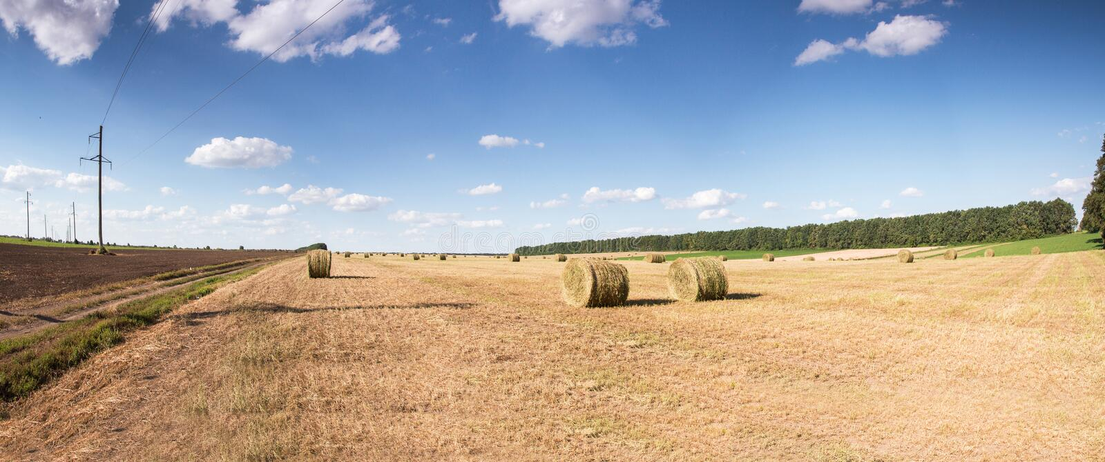Field with bales of straw. Bales of straw on the mown pole.Goluboe sky with clouds stock images