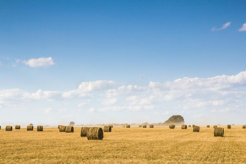 Field with bales of straw. Bales of straw on the mown pole.Goluboe sky with clouds royalty free stock images