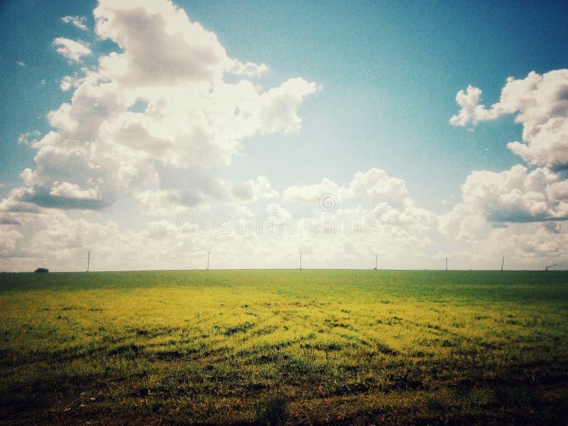 Field on blue sky background stock photo