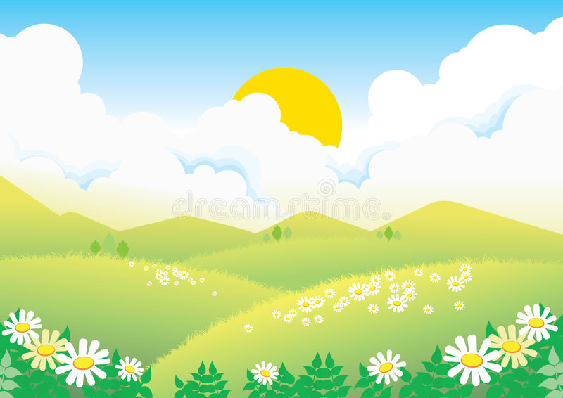 Download Field with camomiles stock vector. Illustration of illuminated - 8394202