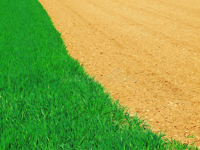 Download Field Contrast stock image. Image of cultivate, farm, harvest - 2255485