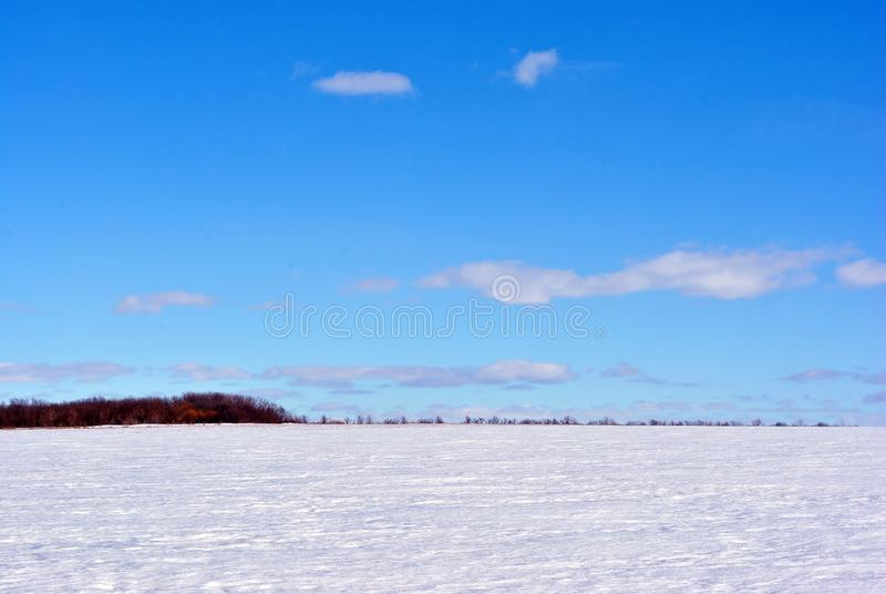 Field covered with snow, trees without leaves line on horizon, winter landscape, bright blue sky. Field covered with snow, trees without leaves line on horizon royalty free stock photography