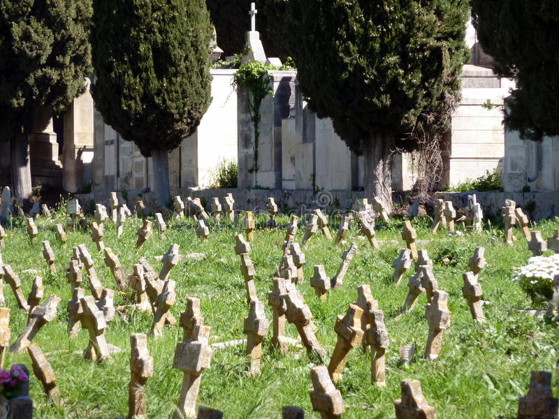 Field with crosses on a cemetery. A field with trees and white crosses on Modica Cemetery, Sicily, Italy royalty free stock photography