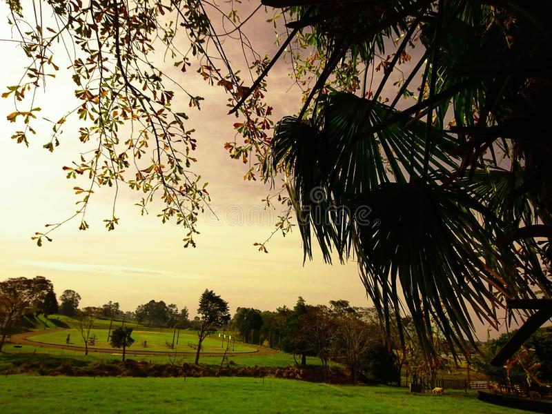 THE FIELD DE LOS SUEÑOS 03 fotos de archivo