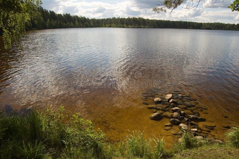 In-field del lago. fotografie stock