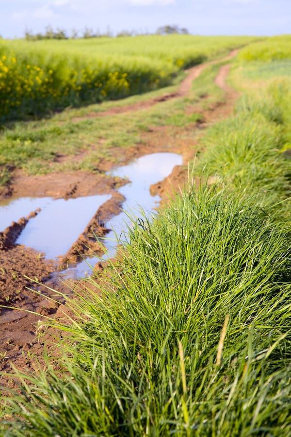 Download Field Dirt Road Stock Image - Image: 28619911