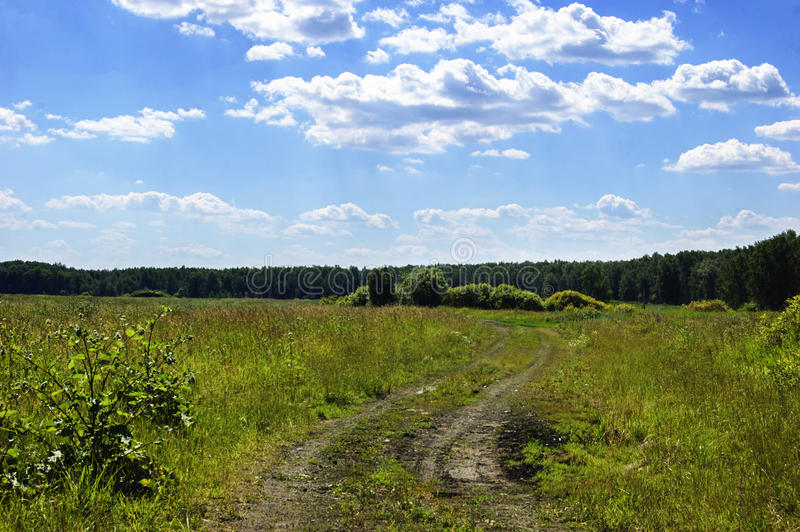 Field dirt road. Blue sky and clouds. stock photography