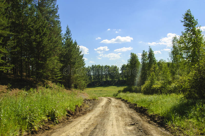 Field dirt road. Blue sky and clouds. stock images