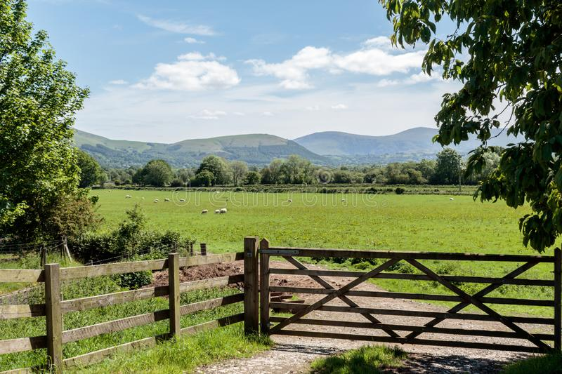 Lake District field. Field with fence and gate, framed by trees and looking toward the hills. Lake District, UK royalty free stock images